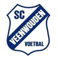 Veenwouden JO13-1